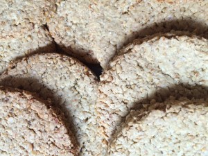 Close up oatcakes
