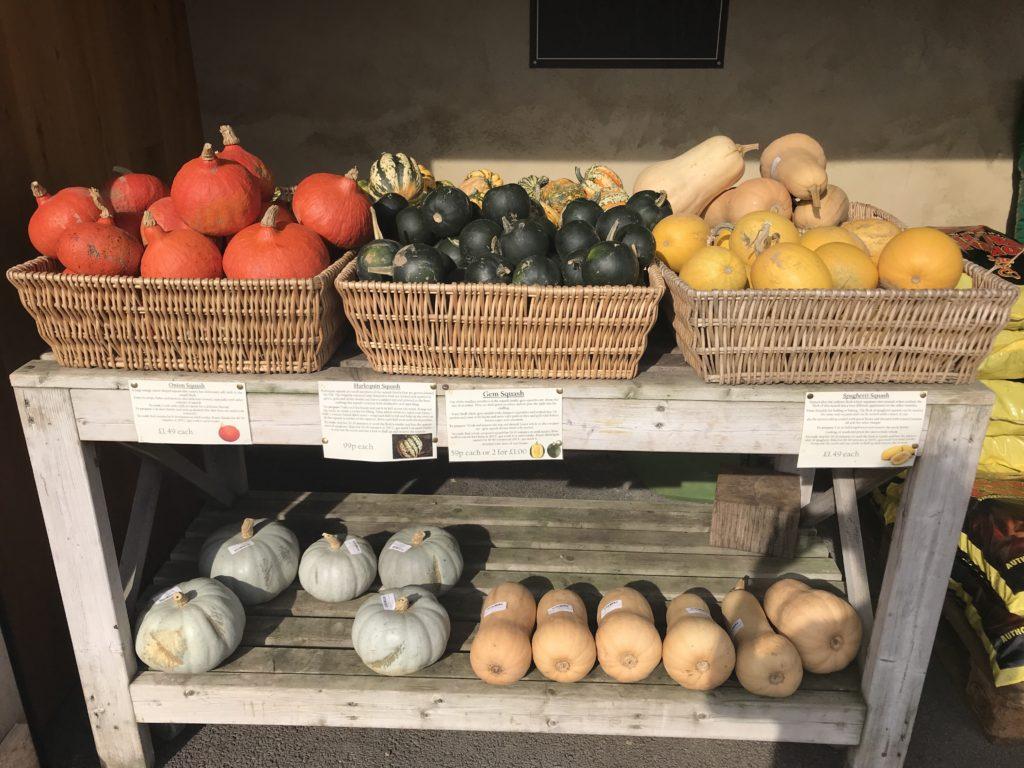 pumpkins at Runcton farm shop
